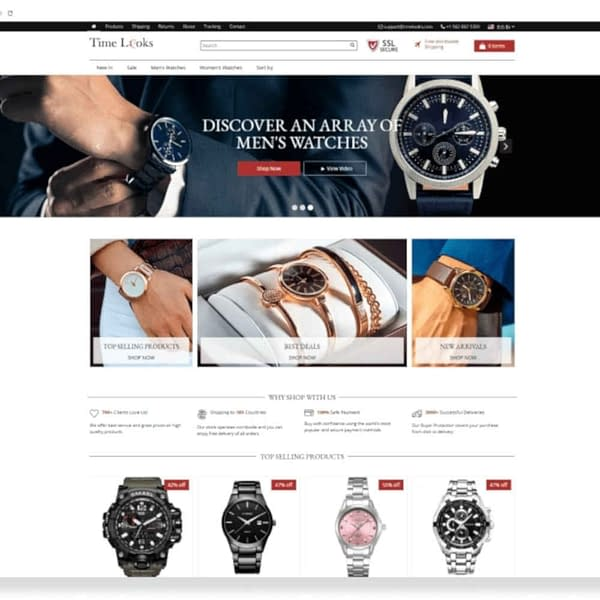 aliexpress dropshipping - ready made dropshipping stores 02