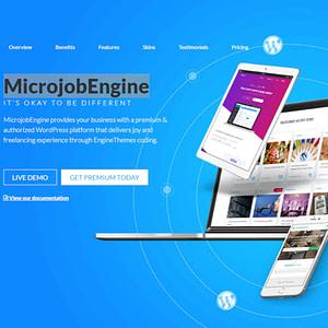microjobengine wordpress theme 01