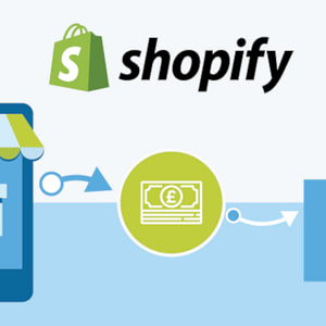 shopify ecommerce store 01